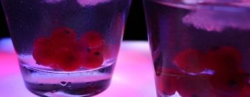 Szkolenie dla sprzedawców napojów alkoholowych